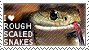 I love Rough-scaled Snakes by WishmasterAlchemist