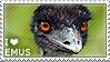 I love Emus