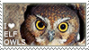I love Elf Owls by WishmasterAlchemist