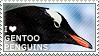 I love Gentoo Penguins by WishmasterAlchemist