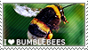 I love Bumblebees by WishmasterAlchemist