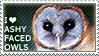 I love Ashy-faced Owls