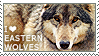I love Eastern Wolves