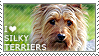 I love Silky Terriers by WishmasterAlchemist