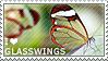 I love Glasswings