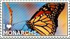 I love Monarchs