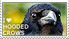I love Hooded Crows by WishmasterAlchemist