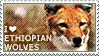 I love Ethiopian Wolves