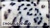 [AP III] Snow Leopard by WishmasterAlchemist