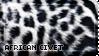 [AP IX] African Civet by WishmasterAlchemist