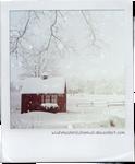 [NPS VI] Let It Snow by WishmasterAlchemist