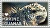I love Marine Iguanas by WishmasterAlchemist