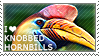 I love Knobbed Hornbills by WishmasterAlchemist