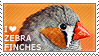 I love Zebra Finches by WishmasterAlchemist