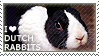 I love Dutch Rabbits by WishmasterAlchemist