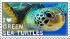 I love Green Sea Turtles by WishmasterAlchemist