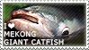 I love Mekong Giant Catfish by WishmasterAlchemist