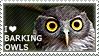 I love Barking Owls