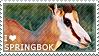 I love Springbok by WishmasterAlchemist
