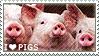 I love Pigs by WishmasterAlchemist