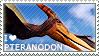 I love Pteranodon