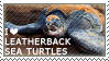 I love Leatherback Sea Turtles by WishmasterAlchemist