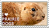 I love Prairie Dogs by WishmasterAlchemist