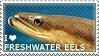 I love Freshwater Eels by WishmasterAlchemist
