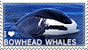 I love Bowhead Whales by WishmasterAlchemist