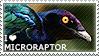 I love Microraptor by WishmasterAlchemist