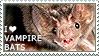 I love Vampire Bats