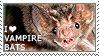 I love Vampire Bats by WishmasterAlchemist