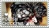 I love Polish Chickens by WishmasterAlchemist