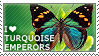I love Turquoise Emperors