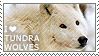 I love Tundra Wolves