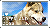 I love Greenland Dogs by WishmasterAlchemist