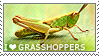 I love Grasshoppers by WishmasterAlchemist