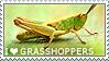I love Grasshoppers by WishmasterAlchemist