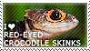I love Red-eyed Crocodile Skinks by WishmasterAlchemist