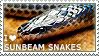 I love Sunbeam Snakes by WishmasterAlchemist