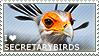 I love Secretarybirds by WishmasterAlchemist