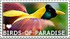 I love Birds-of-paradise by WishmasterAlchemist