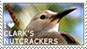 I love Clark's Nutcrackers by WishmasterAlchemist