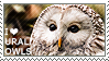 I love Ural Owls by WishmasterAlchemist