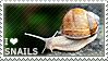 I love Snails