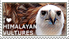 I love Himalayan Vultures by WishmasterAlchemist