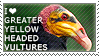 I love Greater Yellow-headed Vultures by WishmasterAlchemist