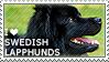 I love Swedish Lapphunds by WishmasterAlchemist