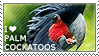 I love Palm Cockatoos by WishmasterAlchemist