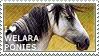 I love Welara Ponies by WishmasterAlchemist